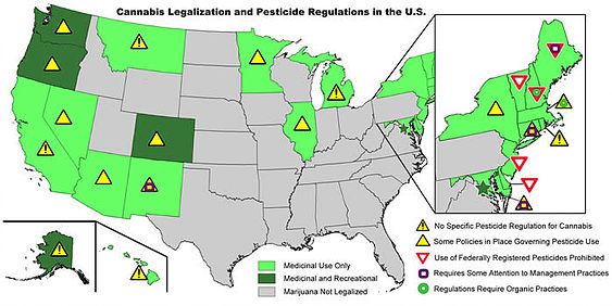 SIpipes Cannabis Pesticides Regulations